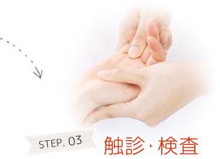 STEP.03 触診・検査